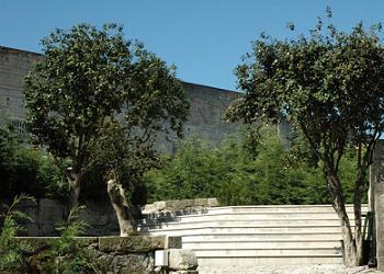Quinta do Comendador
