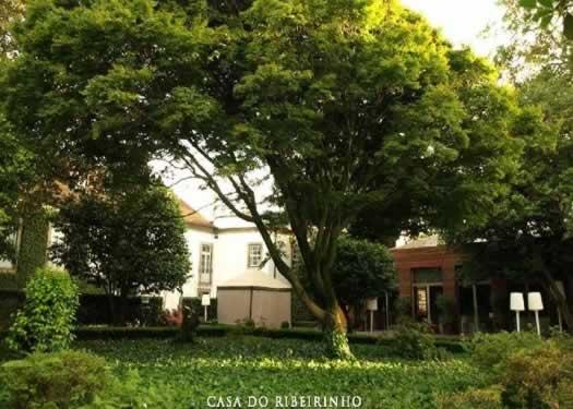 Casa do Ribeirinho